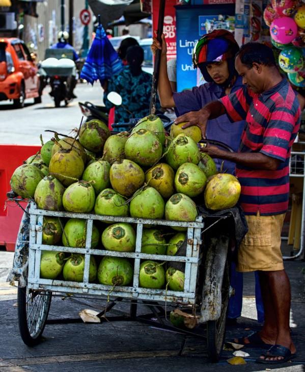 coconut_penang-599x730