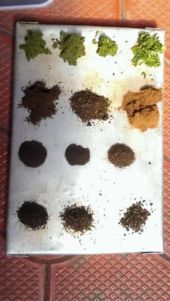 Różne stadia przetwarzania herbaty w Munnar