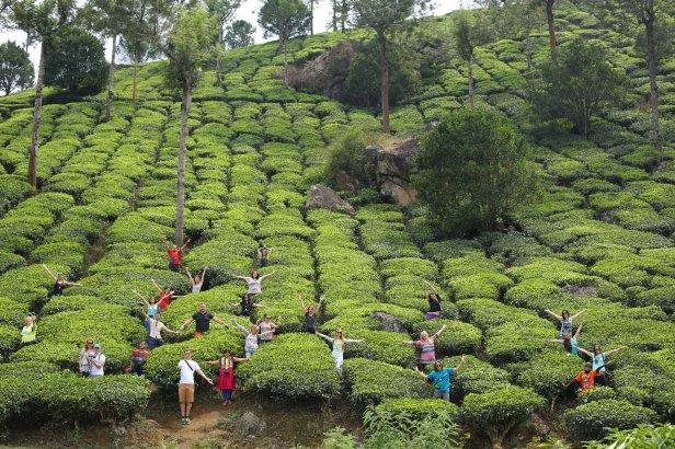 Z wesołą ekipą blogerów z Kerala Blog Express