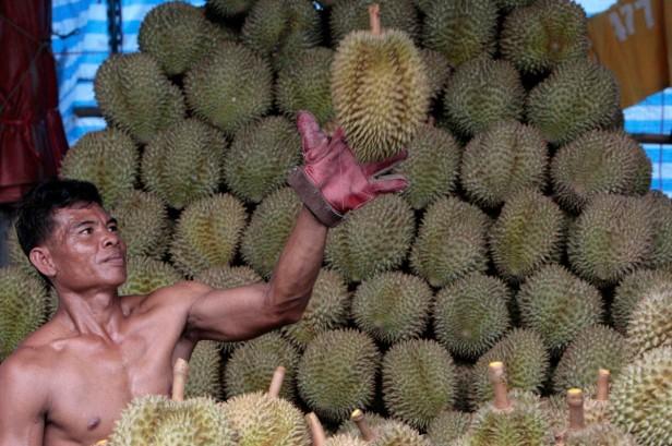 Pan sprzedawca przy dużym durianowym stoisku - jeśli to wasz pierwszy raz, poproście takiego sprzedawcę o pomoc w wybraniu owocu!