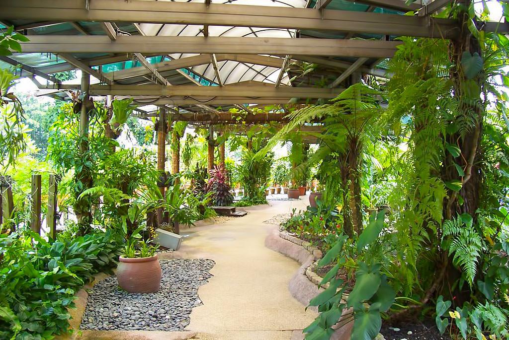 Wejście do ogrodu orchidei