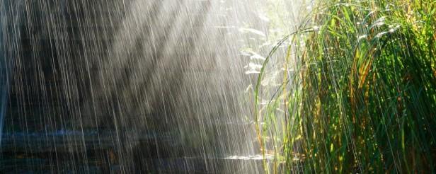 deszcz w Malezji